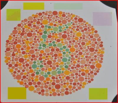 Rozpoznawanie barw na tablicach Ishihary